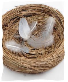 Resultado de imagen de nido vacio